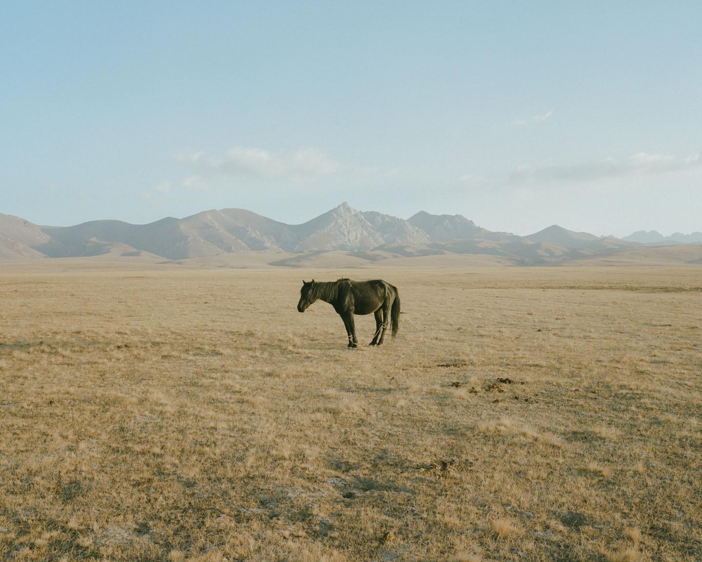 Horsehead Nebula © Matthieu Litt